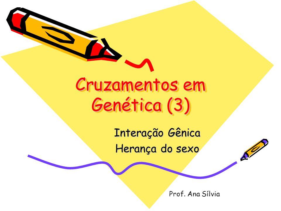 Cruzamentos em Genética (3) Interação Gênica Herança do sexo Prof. Ana Sílvia