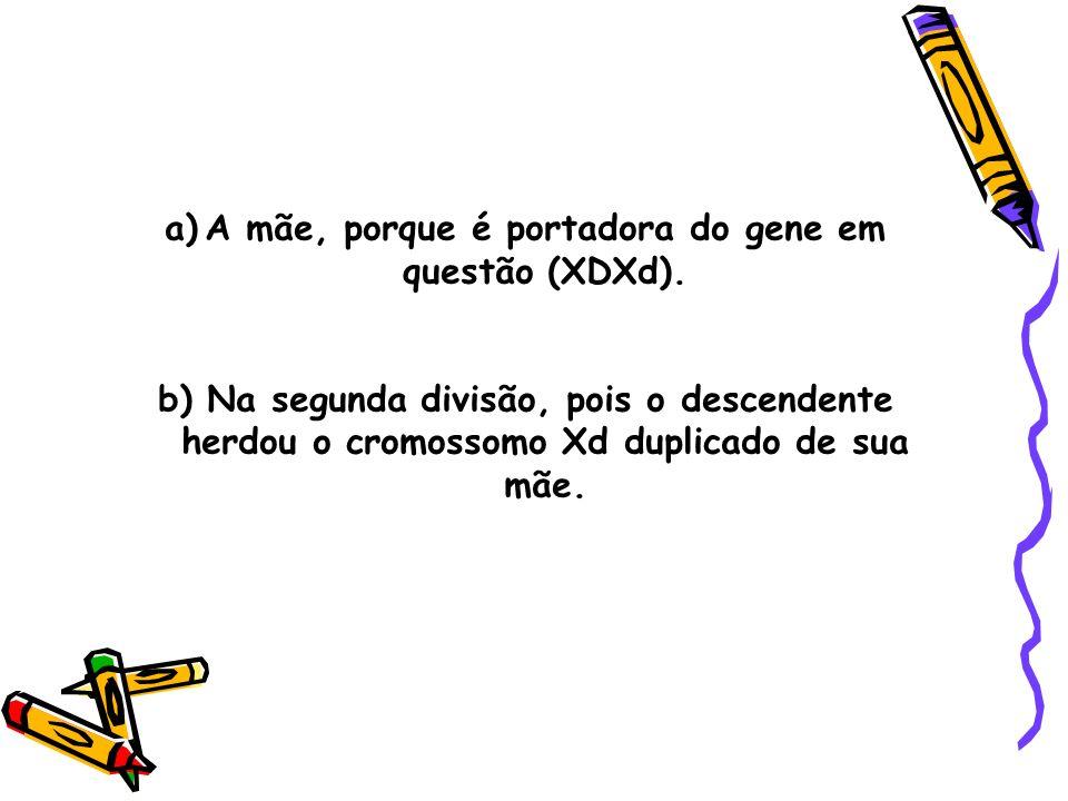a)A mãe, porque é portadora do gene em questão (XDXd). b) Na segunda divisão, pois o descendente herdou o cromossomo Xd duplicado de sua mãe.