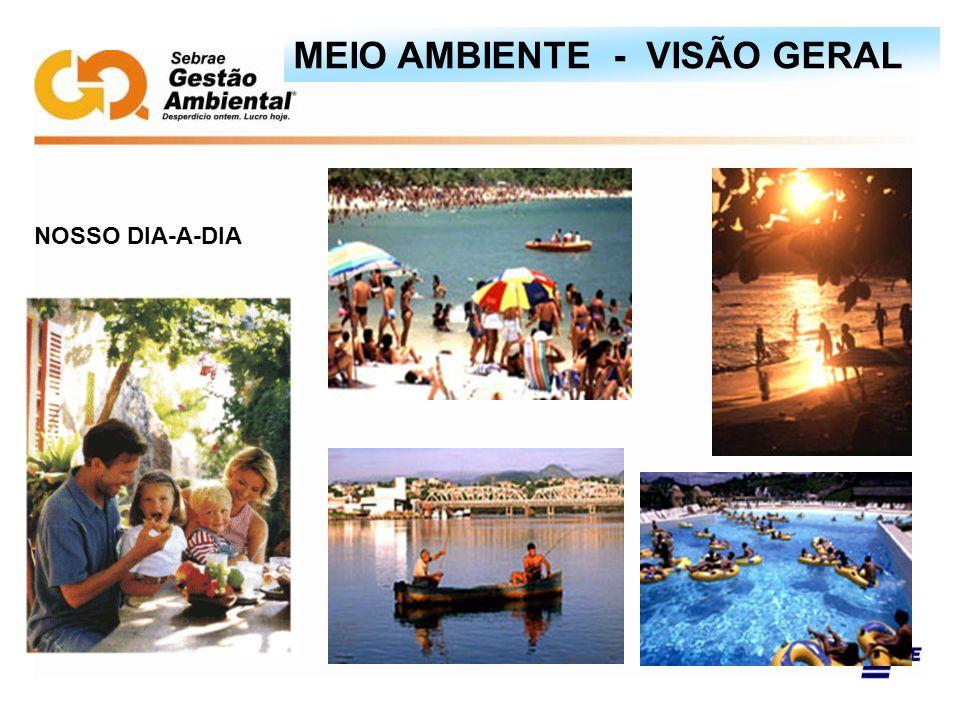 NOSSO DIA-A-DIA MEIO AMBIENTE - VISÃO GERAL