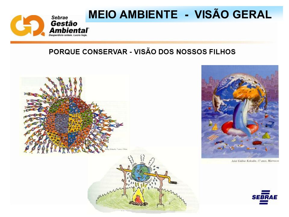 PORQUE CONSERVAR - VISÃO DOS NOSSOS FILHOS MEIO AMBIENTE - VISÃO GERAL