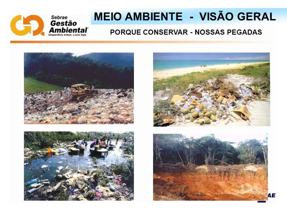 PORQUE CONSERVAR - NOSSAS PEGADAS MEIO AMBIENTE - VISÃO GERAL