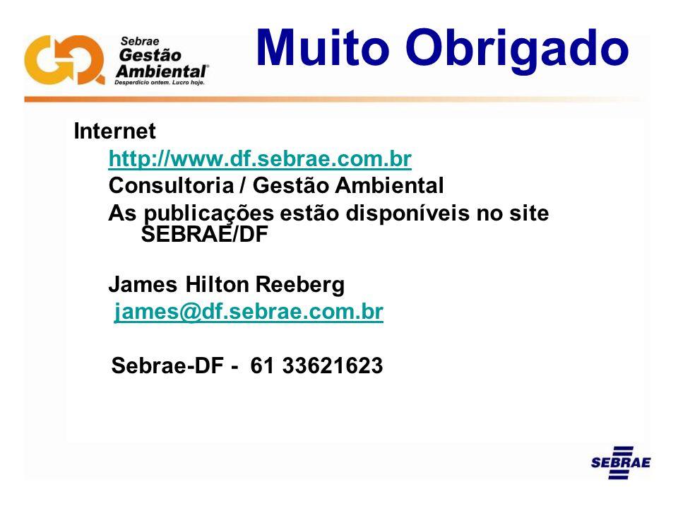 Internet http://www.df.sebrae.com.br Consultoria / Gestão Ambiental As publicações estão disponíveis no site SEBRAE/DF James Hilton Reeberg james@df.s
