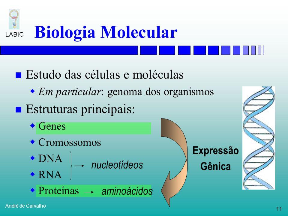 10 André de Carvalho LABIC Bioinformática Para muitas destas análises, as ferramentas computacionais precisam lidar com dados imprecisos e ruidosos Té