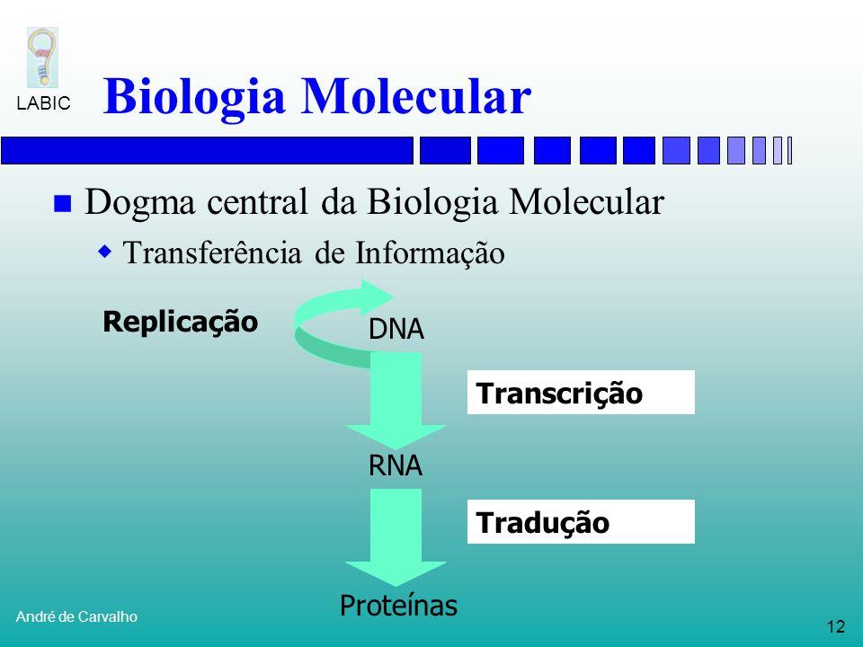 11 André de Carvalho LABIC Biologia Molecular Estudo das células e moléculas Em particular: genoma dos organismos Estruturas principais: Genes Cromoss