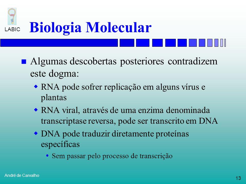 12 André de Carvalho LABIC Biologia Molecular Dogma central da Biologia Molecular Transferência de Informação Transcrição Tradução DNA RNA Proteínas R