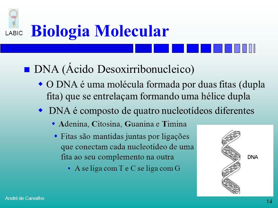 13 André de Carvalho LABIC Biologia Molecular Algumas descobertas posteriores contradizem este dogma: RNA pode sofrer replicação em alguns vírus e pla