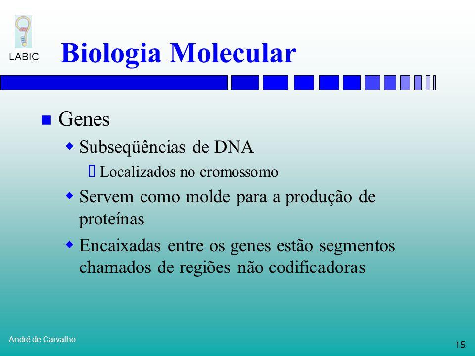 14 André de Carvalho LABIC Biologia Molecular DNA (Ácido Desoxirribonucleico) O DNA é uma molécula formada por duas fitas (dupla fita) que se entrelaç