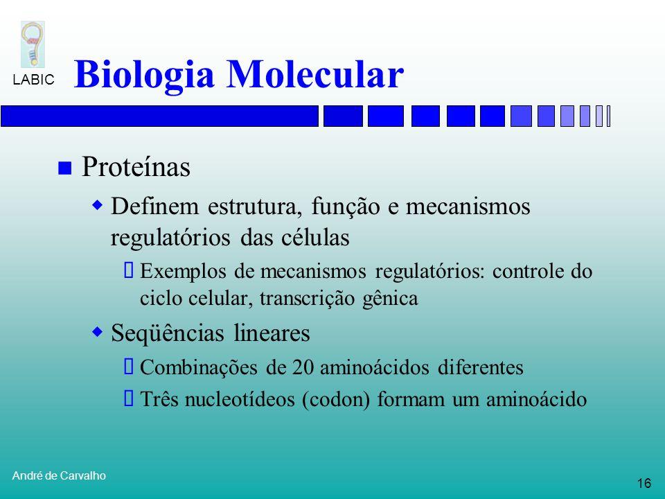 15 André de Carvalho LABIC Biologia Molecular Genes Subseqüências de DNA Localizados no cromossomo Servem como molde para a produção de proteínas Enca