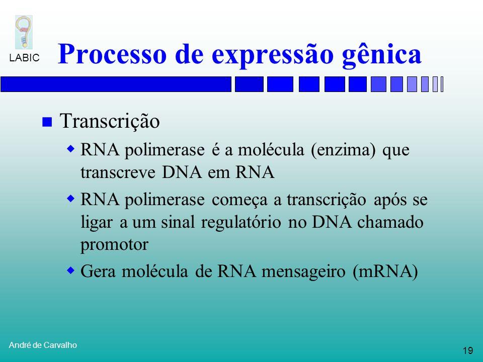18 André de Carvalho LABIC Biologia Molecular Expressão gênica Processo pelo qual genes são usados para produzir proteínas Mecanismos de expressão gên