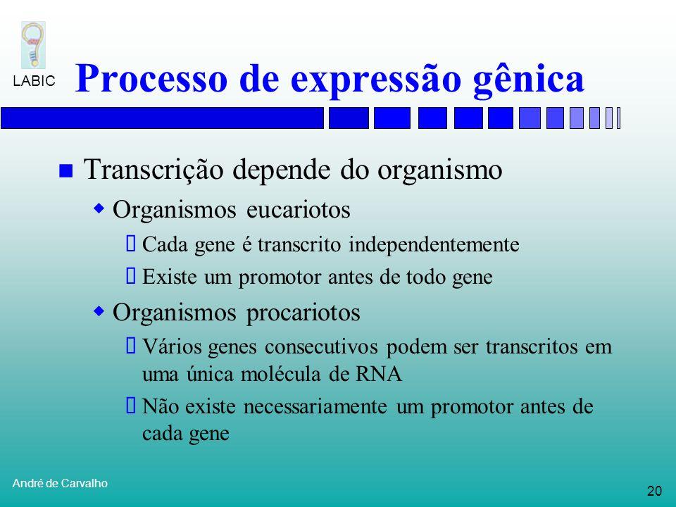 19 André de Carvalho LABIC Processo de expressão gênica Transcrição RNA polimerase é a molécula (enzima) que transcreve DNA em RNA RNA polimerase come