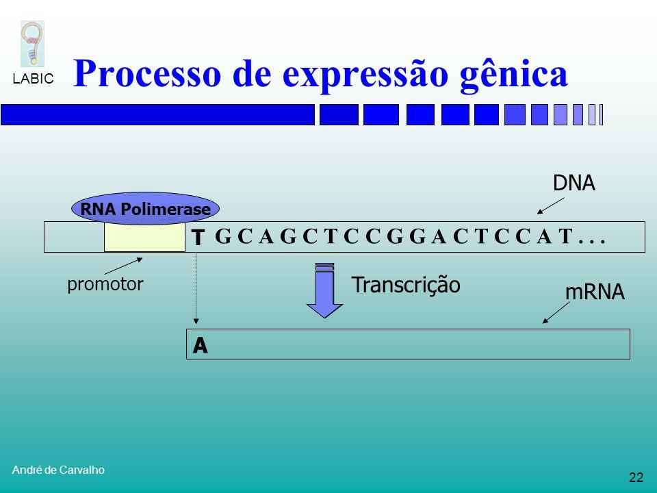 21 André de Carvalho LABIC Processo de expressão gênica Tradução Sintetiza uma proteína utilizando como forma mRNA Leitura do mRNA é feita por uma mol