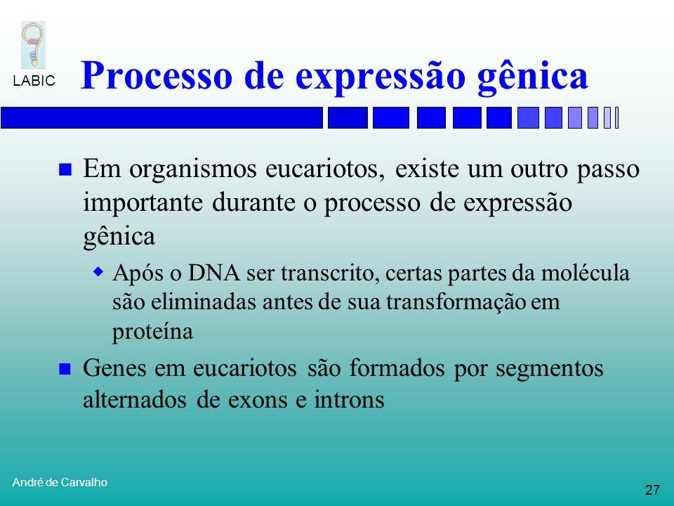 26 André de Carvalho LABIC Processo de expressão gênica Estrutura de leitura Para uma dada faixa de DNA, nucleotídeos podem ser agrupados em triplas d
