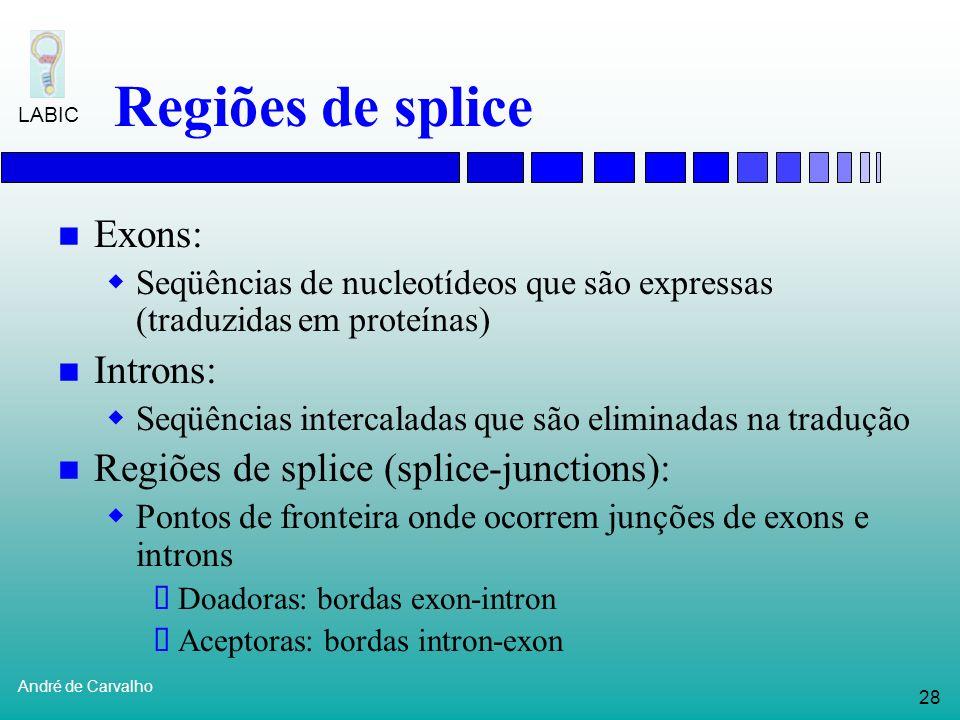 27 André de Carvalho LABIC Processo de expressão gênica Em organismos eucariotos, existe um outro passo importante durante o processo de expressão gên