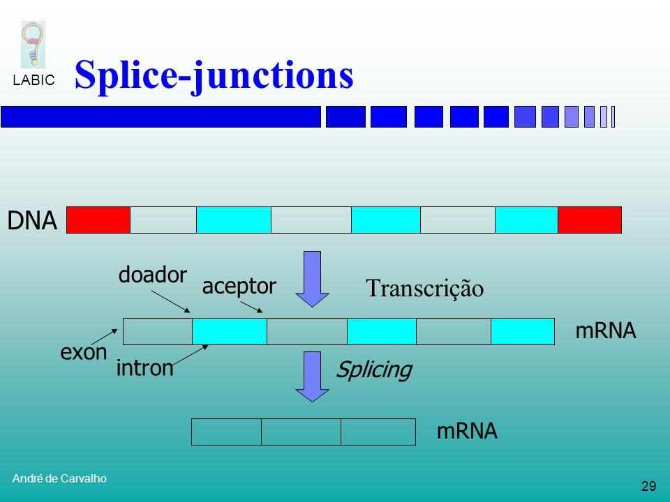 28 André de Carvalho LABIC Regiões de splice Exons: Seqüências de nucleotídeos que são expressas (traduzidas em proteínas) Introns: Seqüências interca