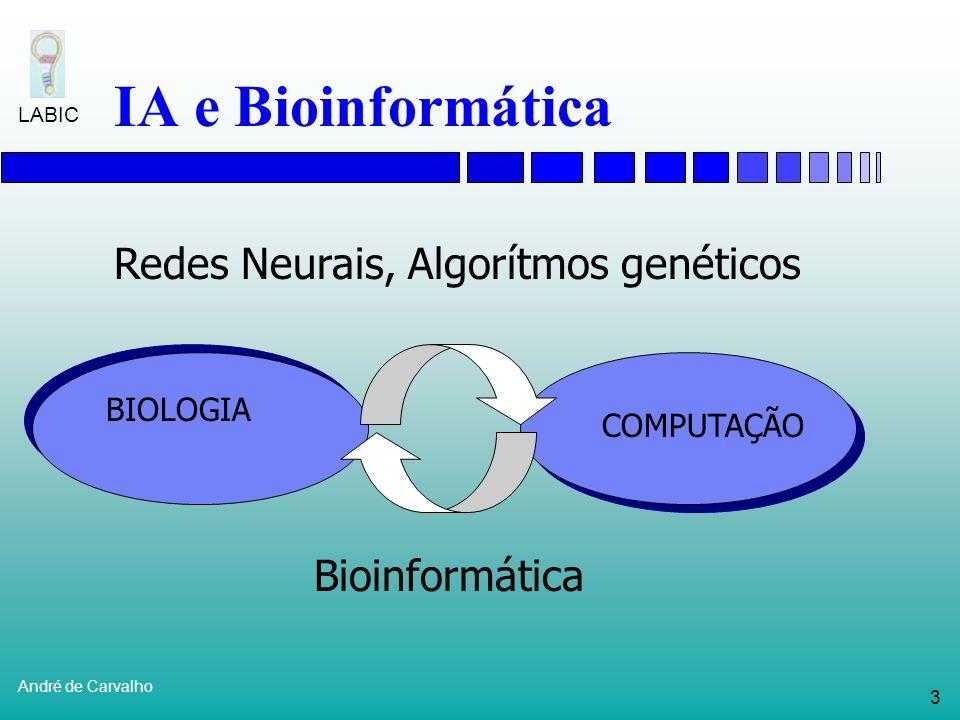63 André de Carvalho LABIC Outras técnicas Eddy (1998)Detecção de genesCadeias de Markov Guan et al (1994)Estrutura de proteínas RNAs, AGs e k- NN Dond e Searls (1994) Previsão da estrutura de genes Lingüística computacional Friedman et al (2000) Detecção de genesRedes Baysianas TrabalhoProblemaTécnica