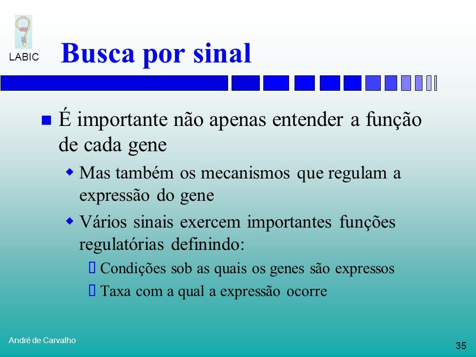 34 André de Carvalho LABIC Reconhecimento de genes Busca por conteúdo Reconhece genes diretamente Identifica segmentos de seqüências de DNA que possue