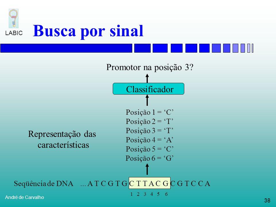 37 André de Carvalho LABIC Busca por sinal Diferentes sinais têm diferentes dificuldades de identificação Codons de parada são facilmente identificado
