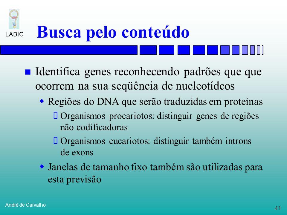 40 André de Carvalho LABIC Reconhecimento de promotores Sinal regulatório de uma molécula de DNA onde RNA polimerase se liga para começar a transcriçã