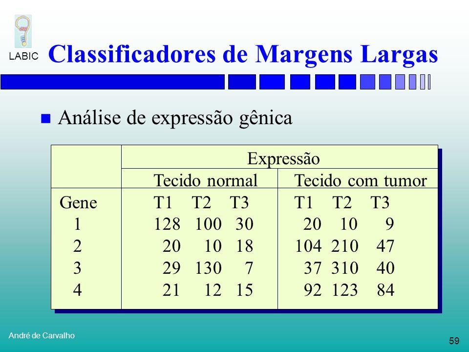 58 André de Carvalho LABIC Classificadores de Margens Largas Máquinas de Vetores Suporte Encontra um hiperplano ótimo que separa classes em um espaço