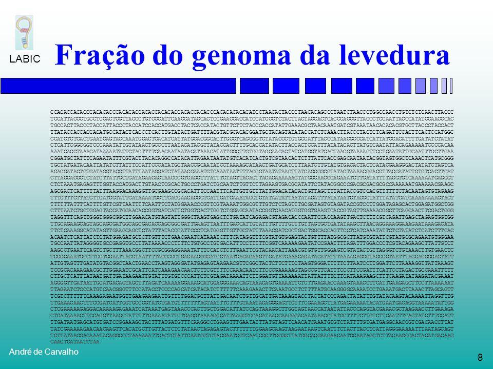 48 André de Carvalho LABIC Reconhecimento de regiões de splicingRampone (1998) Reconhecimento de promotoresMa e Wang (1999) Bajic et al.
