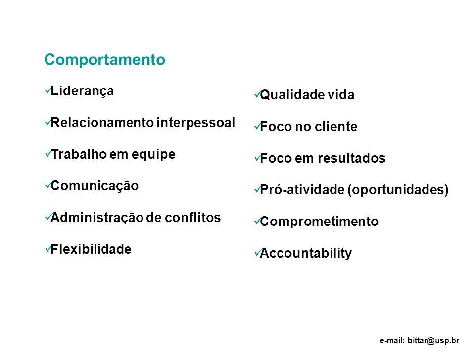 Comportamento Liderança Relacionamento interpessoal Trabalho em equipe Comunicação Administração de conflitos Flexibilidade Qualidade vida Foco no cli