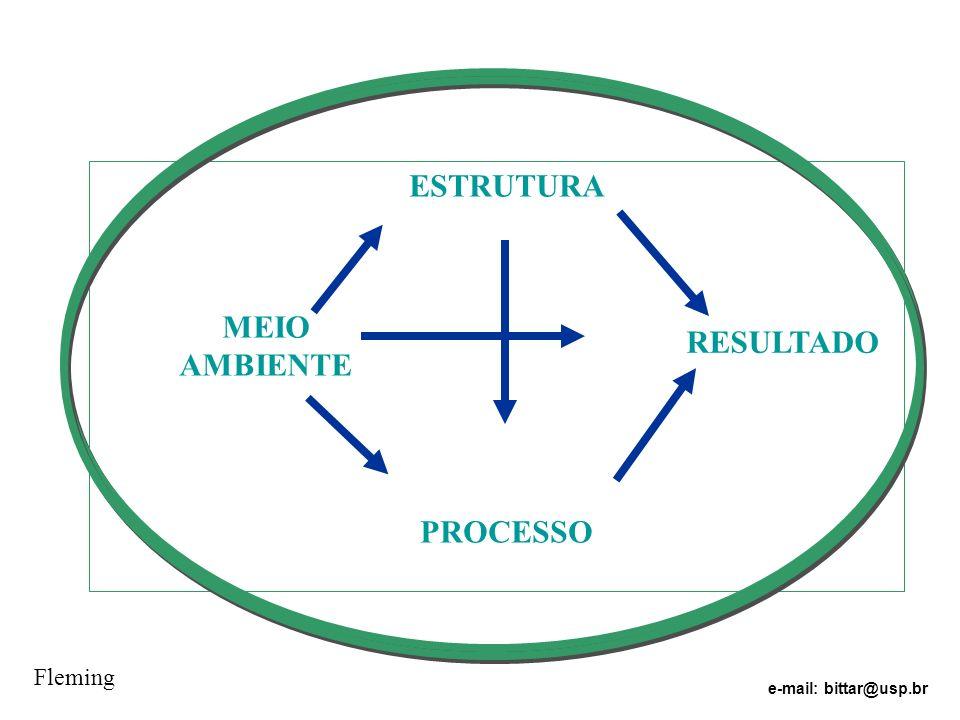 ESTRUTURA PROCESSO RESULTADO MEIO AMBIENTE Fleming e-mail: bittar@usp.br