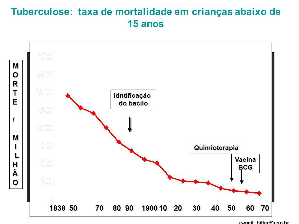 Tuberculose: taxa de mortalidade em crianças abaixo de 15 anos 1838 1838507080901019002030 Idntificação do bacilo Quimioterapia VacinaBCG MORTE/M I LH