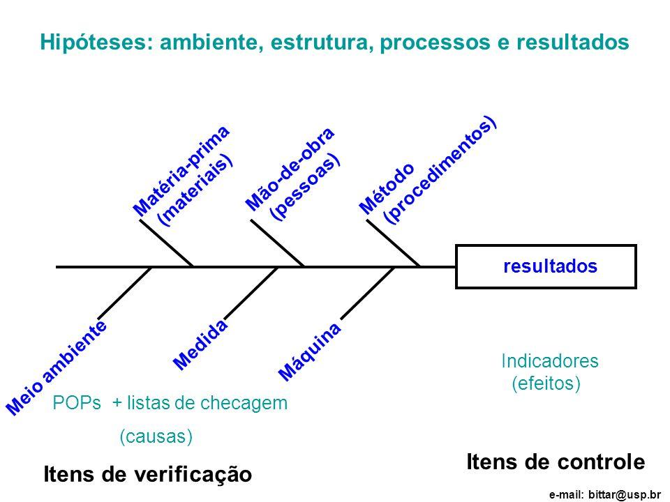 resultados Hipóteses: ambiente, estrutura, processos e resultados Matéria-prima (materiais) Mão-de-obra (pessoas) Medida Método (procedimentos) Meio a