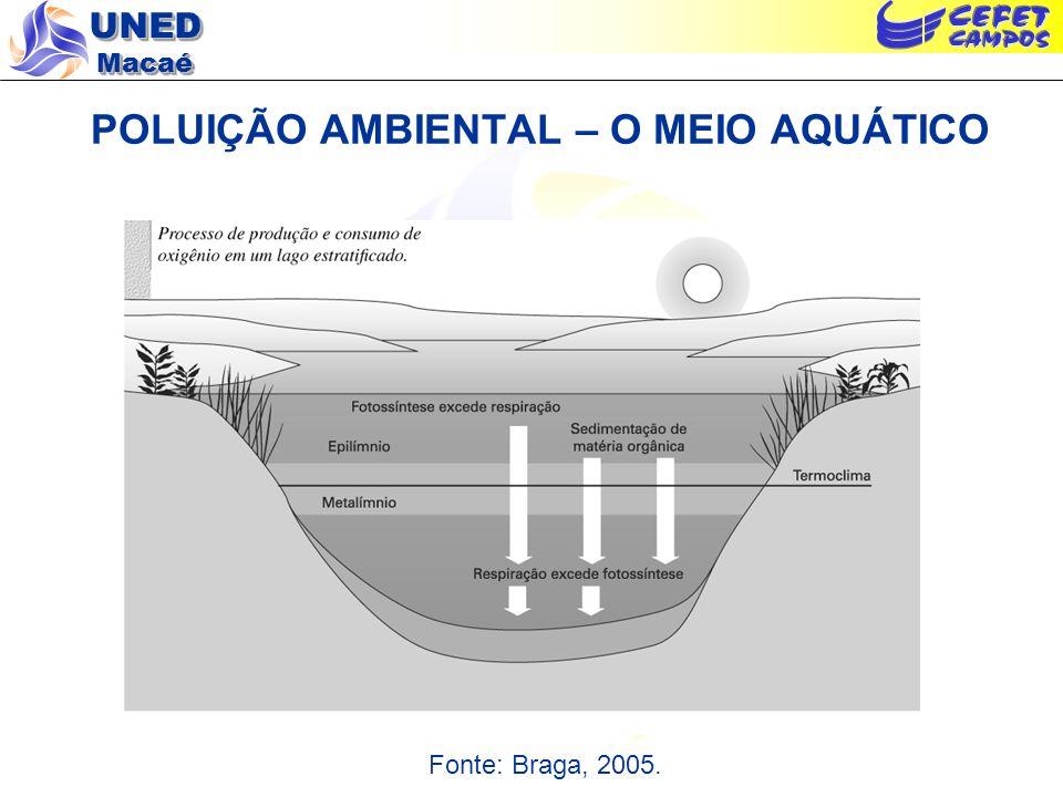 UNED Macaé POLUIÇÃO AMBIENTAL – O MEIO AQUÁTICO Fonte: Braga, 2005.