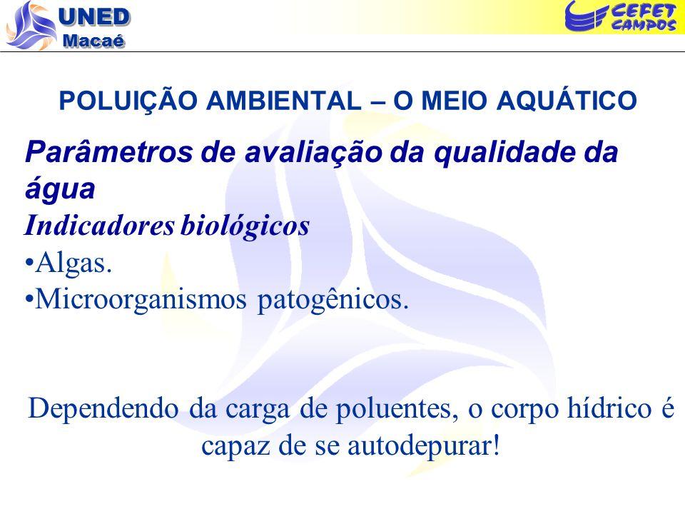 UNED Macaé POLUIÇÃO AMBIENTAL – O MEIO AQUÁTICO Parâmetros de avaliação da qualidade da água Indicadores biológicos Algas. Microorganismos patogênicos