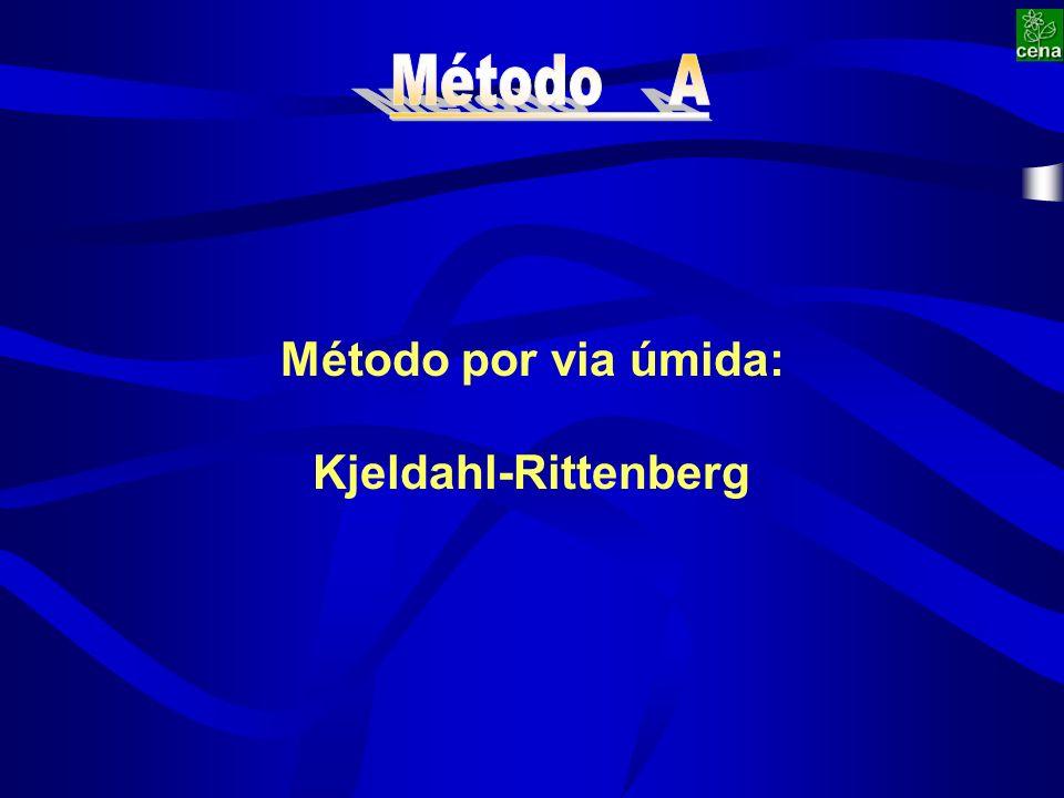 Método por via úmida: Kjeldahl-Rittenberg