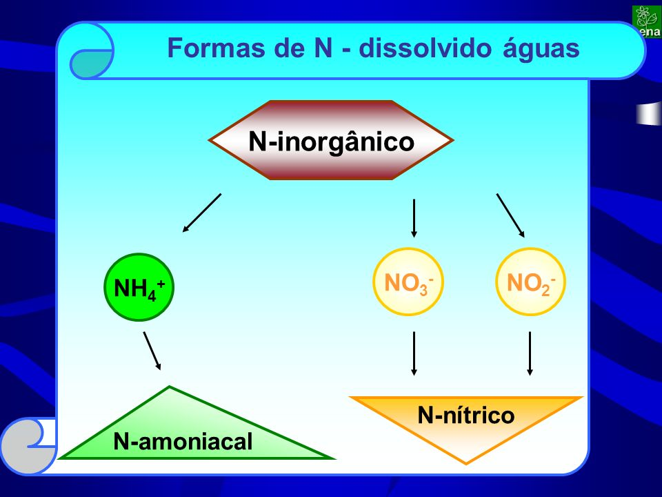 N-amoniacal Formas de N - dissolvido águas N-inorgânico NH 4 + NO 3 - NO 2 - N-nítrico