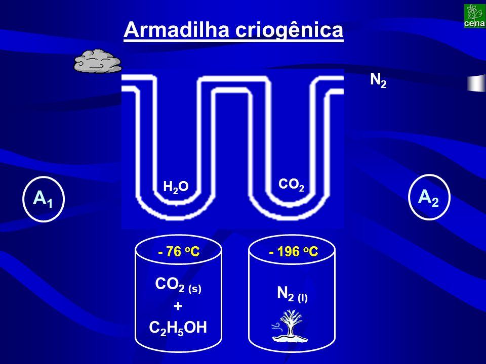 CO 2 (s) C 2 H 5 OH + - 76 o C N 2 (l) - 196 o C Armadilha criogênica H2OH2O CO 2 N2N2 A1A1 A2A2