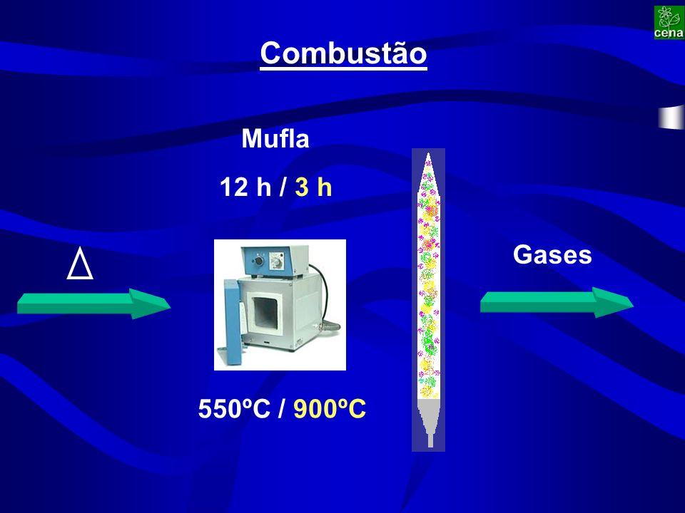 Combustão Mufla 12 h / 3 h 550ºC / 900ºC Gases