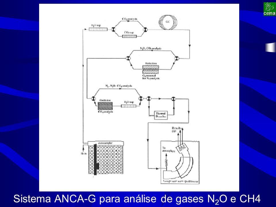 Sistema ANCA-G para análise de gases N 2 O e CH4