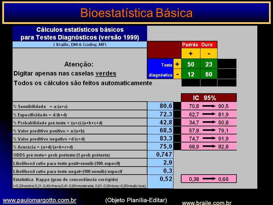 www.braile.com.br www.paulomargotto.com.br(Objeto Planília-Editar)