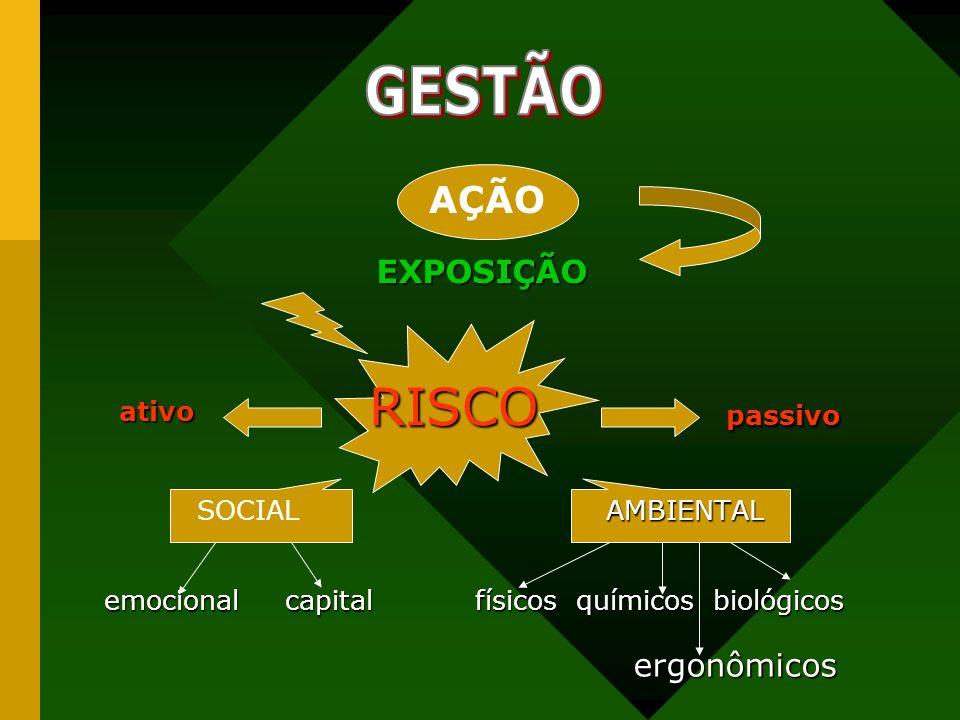 RISCO passivo RISCO passivo AMBIENTAL SOCIAL AMBIENTAL emocional capital físicos químicos biológicos emocional capital físicos químicos biológicos erg