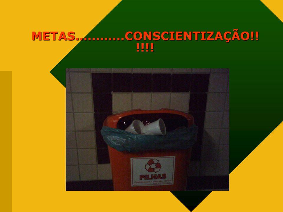 METAS............CONSCIENTIZAÇÃO!! !!!!