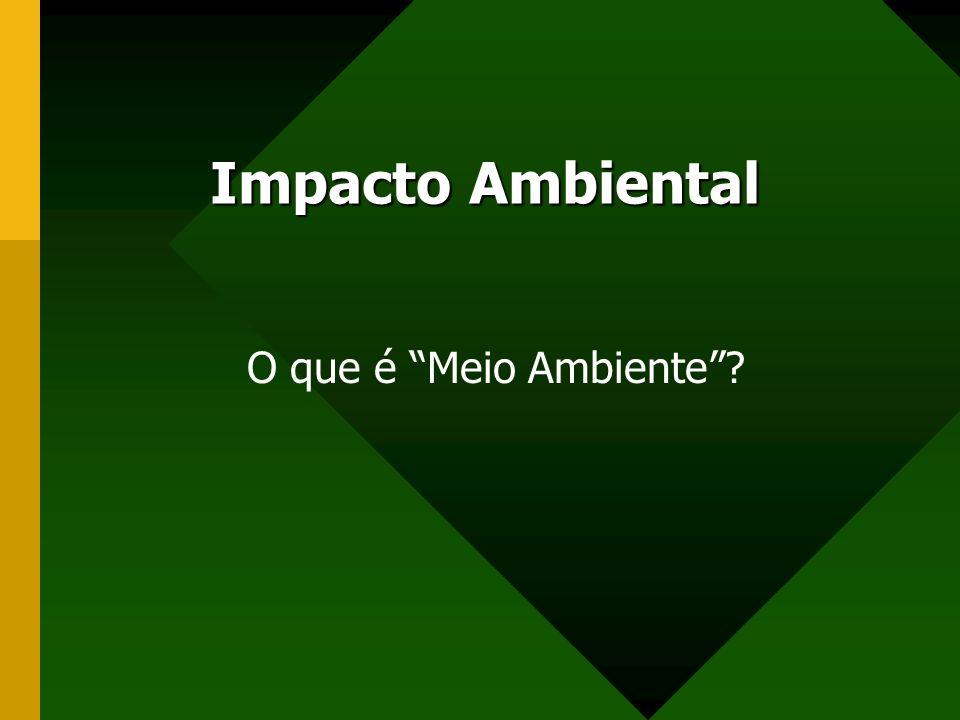 Impacto Ambiental O que é Meio Ambiente?