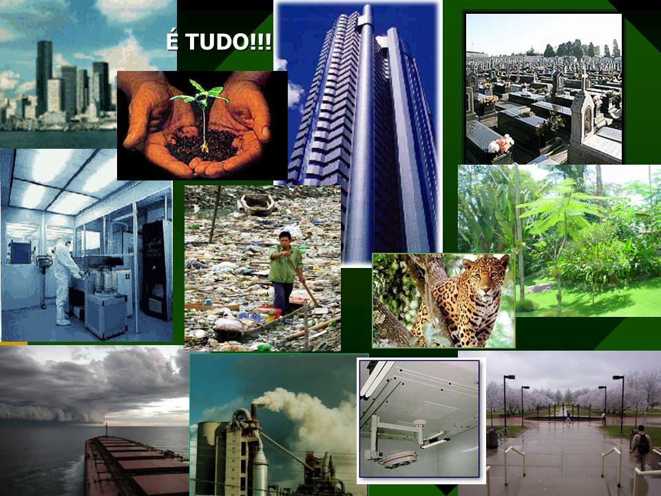 Meio Ambiente O planeta terra não possui apenas vidas sobre ele mas parece ele mesmo ser um ser vivo e independente.