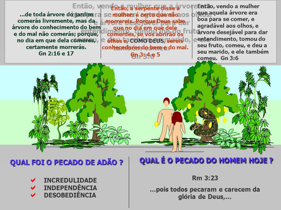 ...de toda árvore do jardim comerás livremente, mas da árvore do conhecimento do bem e do mal não comerás; porque, no dia em que dela comeres, certame