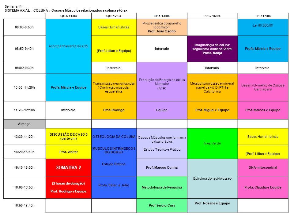 Semana 11 - SISTEMA AXIAL – COLUNA : Ossos e Músculos relacionados a coluna e tórax QUA 11/04QUI 12/04SEX 13/04SEG 16/04TER 17/04 08:00-8:50h Acompanh