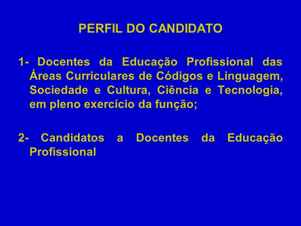 PERFIL DO CANDIDATO 1- Docentes da Educação Profissional das Áreas Curriculares de Códigos e Linguagem, Sociedade e Cultura, Ciência e Tecnologia, em