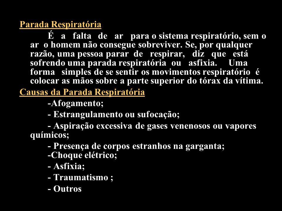 Parada Respiratória É a falta de ar para o sistema respiratório, sem o ar o homem não consegue sobreviver. Se, por qualquer razão, uma pessoa parar de