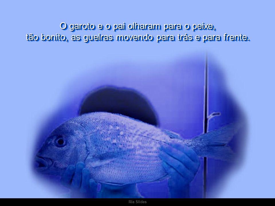 Ria Slides Era o maior que já tinha visto, porém sua pesca só era permitida na temporada.
