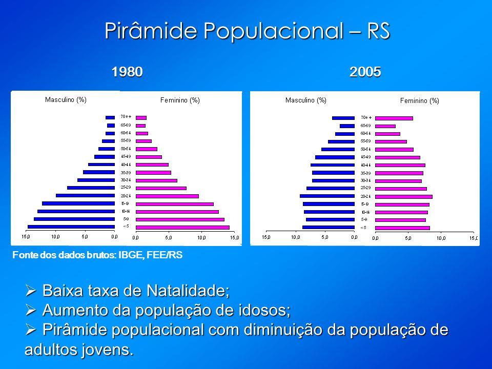 Pirâmide Populacional – RS 19802005 Fonte dos dados brutos: IBGE, FEE/RS Baixa taxa de Natalidade; Baixa taxa de Natalidade; Aumento da população de idosos; Aumento da população de idosos; Pirâmide populacional com diminuição da população de adultos jovens.
