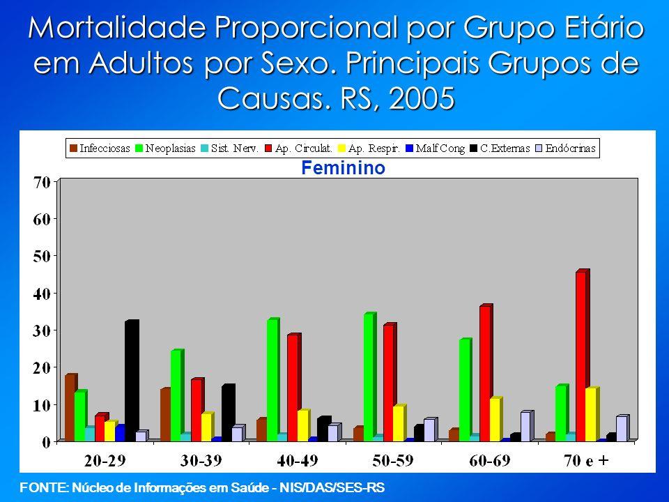 Mortalidade Proporcional por Grupo Etário em Adultos por Sexo. Principais Grupos de Causas. RS, 2005 Feminino FONTE: Núcleo de Informações em Saúde -