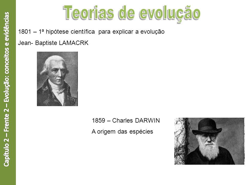 1801 – 1ª hipótese científica para explicar a evolução Jean- Baptiste LAMACRK 1859 – Charles DARWIN A origem das espécies