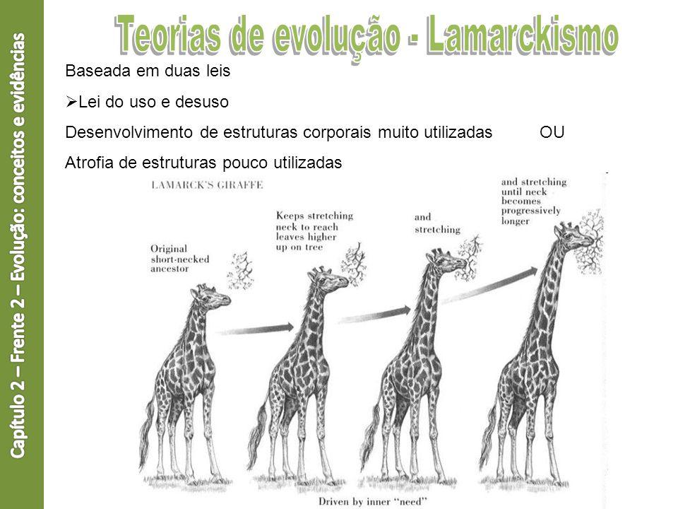 Baseada em duas leis Lei do uso e desuso Desenvolvimento de estruturas corporais muito utilizadas OU Atrofia de estruturas pouco utilizadas