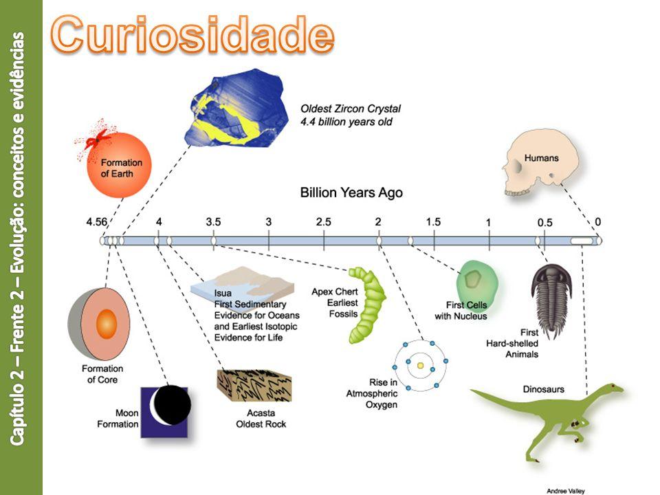 Milhões de espécies de seres vivos Como surgiu essa diversidade.